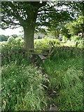 SE0424 : Stile on Sowerby Bridge Bridleway 35 at West Field, Luddendenfoot by Humphrey Bolton