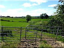 H6056 : Bent gates, Feddan by Kenneth  Allen