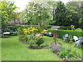 SJ8491 : Didsbury back garden with blossom and flowers by David Hawgood