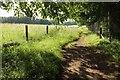 SO9739 : Wychavon Way beside Long Plantation #5 by Derek Harper