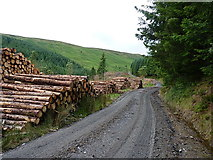 SH9621 : Timber stacks on the forest haul road by Richard Law