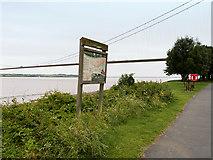 TA0225 : River Humber, Hessle Foreshore by David Dixon