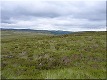 SH9420 : Hillside above the Hirddu Fach by Richard Law