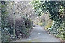SX5058 : Footpath, Estover by N Chadwick