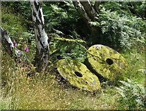 SK2479 : Abandoned millstones by the track to Bole Hill Quarry by Neil Theasby