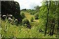 SX8778 : Ugbrooke Park by Derek Harper