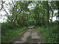 SW5434 : Track (bridleway) to Tredrea Manor by JThomas