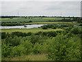 SE4427 : The Moat, Fairburn Ings by Hugh Venables