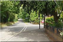 SP2778 : Tile Hill Lane by Stephen McKay