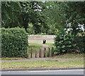 SK5559 : Berry Hill Lane, Mansfield, Notts. by David Hallam-Jones