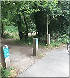 SU9946 : Downslink Railway from the A281 by Chris Thomas-Atkin