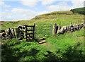 NO1802 : Gate on path to Bishop Hill, Lomond Hills by Bill Kasman