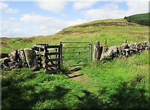 NO1802 : Gate on path to Bishop Hill, Lomond Hills by Bill Kasman
