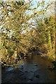 SX0873 : De Lank River from Keybridge by Derek Harper