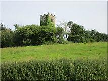 X1278 : Ruined church at Kinsalebeg by Jonathan Thacker