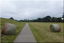SE5853 : Red, white and green bales by DS Pugh