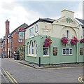 TL4558 : Cambridge: The Elm Tree by John Sutton