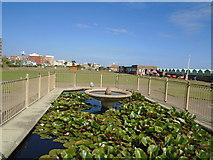 TQ2704 : Water Feature, Hove Beach Bowls Club by Paul Gillett