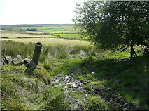 SE0028 : A boggy part of Wadsworth FP74, Chiserley by Humphrey Bolton
