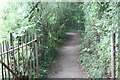 ST2688 : Footpath to footbridge over River Ebbw by M J Roscoe