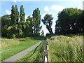 TQ4577 : East Wickham Open Space by Marathon
