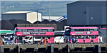 J3576 : Metro buses, Belfast harbour (July 2017) by Albert Bridge