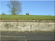 NT9953 : Car park and fortifications, Berwick by JThomas