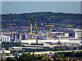 J3575 : Belfast Docks, a View from Cave Hill by David Dixon