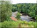 SE3456 : Weir in The River Nidd, Knaresborough by Richard Humphrey