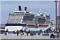 J3576 : The 'Celebrity Silhouette' at Belfast by Rossographer