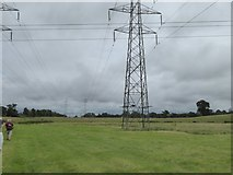 SX9791 : Walking to Sowton under the power lines by David Smith