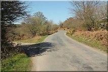 SX7473 : Road to Cold East Cross by Derek Harper