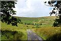 SD6447 : Access Lane to Whitemore (1) by Chris Heaton