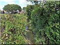 TQ6002 : Drain near Elm Grove, Hampden Park by PAUL FARMER