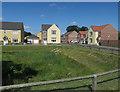 TG3608 : New housing, Lingwood by Hugh Venables