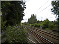 SP0581 : Railway line north of Bournville station by Richard Vince