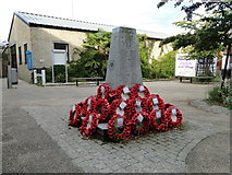 TM3863 : Saxmundham War Memorial by Adrian S Pye