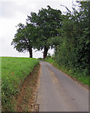 TM2743 : Newbourne: up The Street by John Sutton