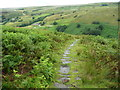 SD9420 : The Moorhey Bank bridleway, Walsden by Humphrey Bolton