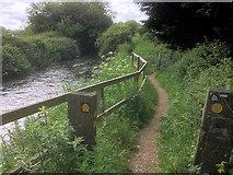 SU4619 : The Itchen Way, Eastleigh by David Dixon