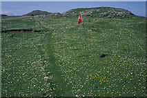 NR3593 : Colonsay Golf Course by Julian Paren