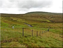 NY8022 : Mickle Fell, seen from Hanging Seal by Roger Cornfoot