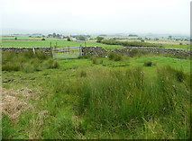 SD7657 : Gate on footpath from Heath Farm to Longtons Lane, Gisburn Forest by Humphrey Bolton