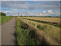 TL3769 : Busway cyclepath by Hugh Venables