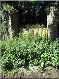 J6250 : Overgrown entrance to the Quintin Castle Demesne by Eric Jones