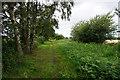 SE7236 : Rail trail towards Bubwith by Ian S