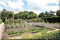 ST5019 : Tintinhull Garden: the vegetable plot by Bill Harrison