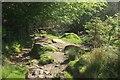 SX6479 : Leaving the open moor near Hartyland by Derek Harper