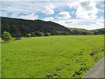SJ1733 : Tregeiriog, Ceiriog Valley by Mike Faherty
