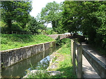 SO8602 : Old lock on the Thames and Severn Canal by David Purchase